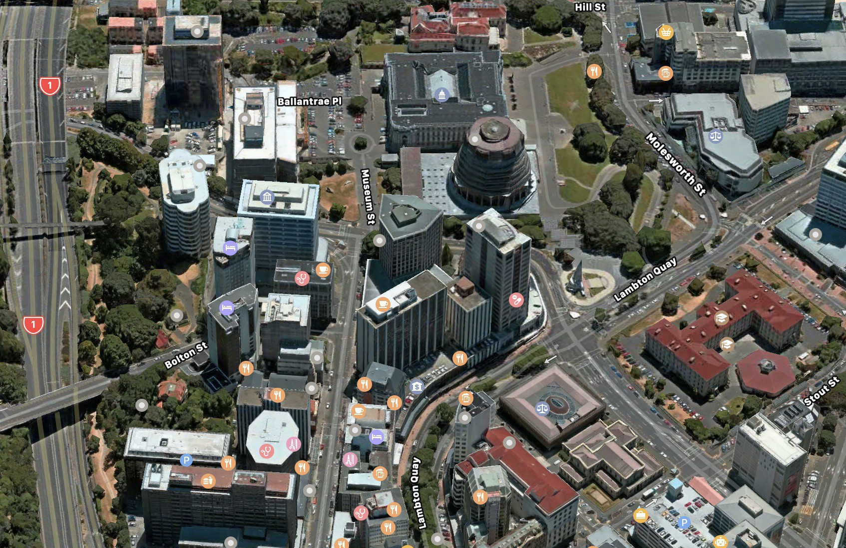 3D satellite view of Wellington in Apple Maps in MacOS. It looks bright and high-res.