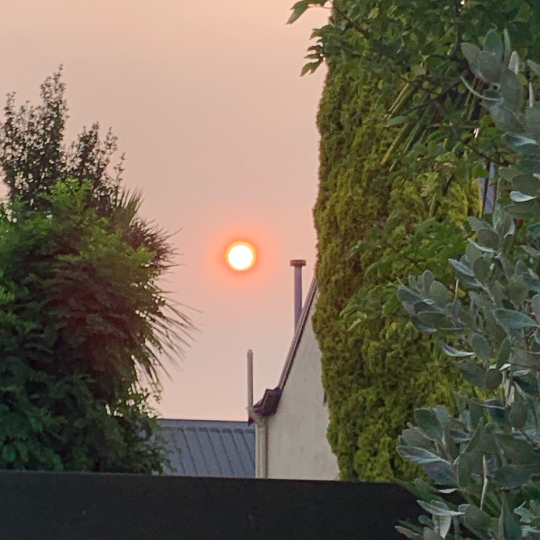 The sun, about an hour before setting, loking extremely orange/red thanks to particles of ash