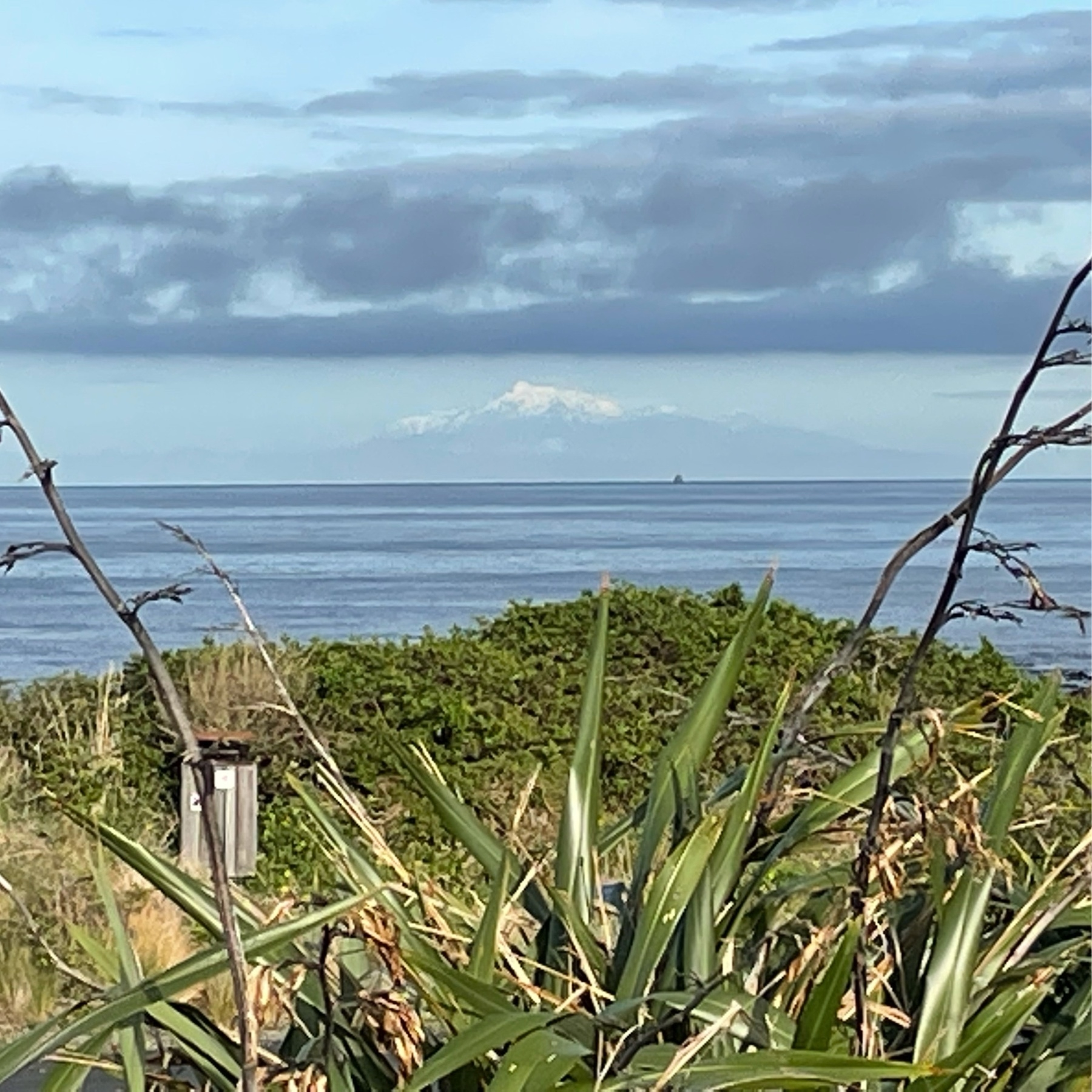 Mount Tapuaenuku, capped with snow, in the Kaikoura ranges of the South Island, as seen from the south coast of Wellington in the North Island today.